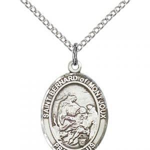 St Bernard of Montjoux Medal