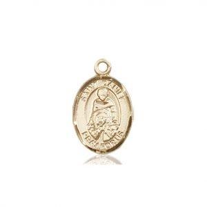 St. Daniel Charm - 84533 Saint Medal