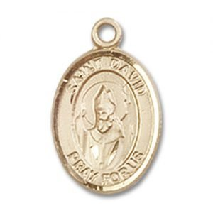 St. David of Wales Charm - 14 Karat Gold Filled (#84541)