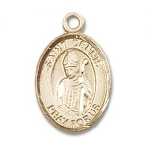 St. Dennis Charm - 14 Karat Gold Filled (#84535)