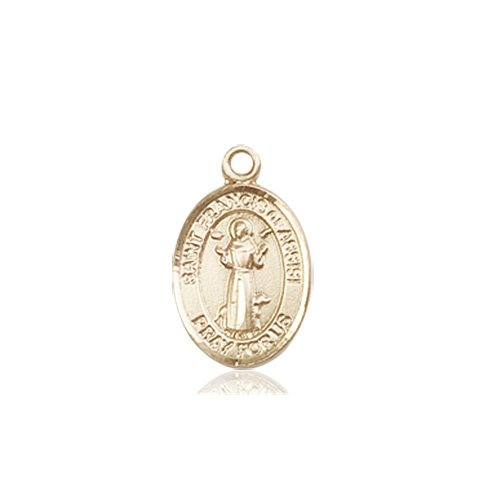 St. Francis of Assisi Charm - 84569 Saint Medal