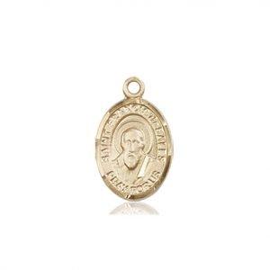 St. Francis De Sales Charm - 84566 Saint Medal