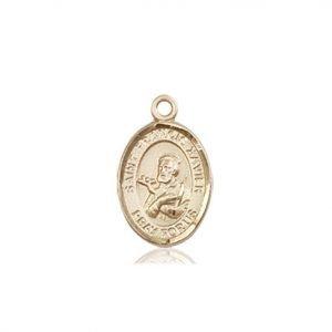 St. Francis Xavier Charm - 84572 Saint Medal