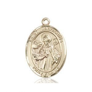 St. Januarius Medal - 84184 Saint Medal