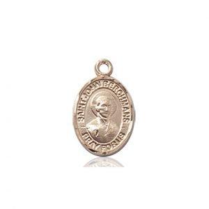 St. John Berchmans Charm - 85422 Saint Medal