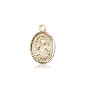 St. Pius X Charm - 85248 Saint Medal